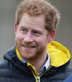 Prinz Harry hat genug von seinem Single-Dasein.                                                                                                                                                      Mehr