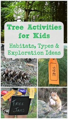 Tree Activities for Kids: Animal Habitats, Tree Types Forest School Activities, Camping Activities For Kids, Nature Activities, Kids Learning Activities, Stem Activities, Camping Ideas, Summer Activities, Outdoor Activities, Camping Theme