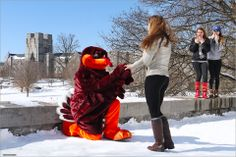 Happy Valentine's Day to Hokies everywhere! #virginiatech #hokies #valentine