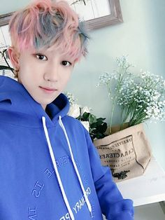 seventeen vernon and seungkwan Woozi, Wonwoo, Jeonghan, Seungkwan, Vernon Chwe, 17 Kpop, Seventeen Minghao, Hip Hop, Adore U