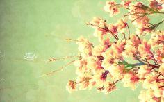 Spring Wallpaper HD Download Background Desktop • iPhones Wallpapers