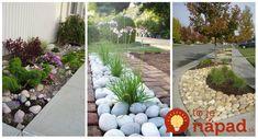 Konečne fantastický recept na zrkadlovú čoko polevu za 5 minút: Stačí vyliať na korpus a vaši hostia budú uchvátení! Stepping Stones, Succulents, Gardening, Outdoor Decor, Plants, Diet, Cactus, Stair Risers, Lawn And Garden
