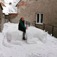 Fan of Horses - the one stop shop for horse fanatics Q:😍🐴😍caption this!😍🐴😍 Did you get snow already! A: I don't get snow! Cute Funny Animals, Funny Cute, Snow Sculptures, Metal Sculptures, Wood Sculpture, Bronze Sculpture, Snow Art, Funny Horses, Horse Quotes