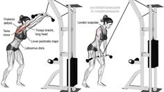 Cable straight-arm pull-down