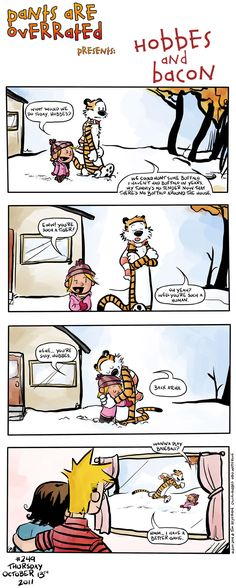 """Hobbes and Bacon... I cannot tell you how sad I was when Bill Watterson stopped drawing """"Calvin and Hobbes"""" in 1995.  I have books with every strip that he ever drew...I cannot tell you how delighted I was when I saw that Dan and Tom Heyerman drew a couple of strips with the characters in them.  The art and the humor are dead on.  I only wish that there had been more than two..."""