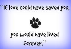 7 Beautiful Pet Memorials and Gifts #dogblog #dogs #dogmemorial