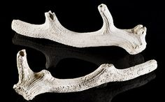 Antler picks excavated from Stonehenge