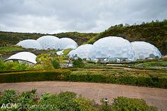 Exploring the Tropical Rainforest of the Eden Project, Cornwall, England | CheeseWeb
