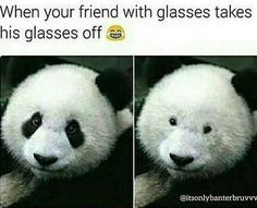 Updated daily, for more funny memes our memes section. Disqora brings you the most funniest memes photos all the day with our audience. Funny Disney Jokes, Funny Animal Jokes, Crazy Funny Memes, Really Funny Memes, Funny Animal Pictures, Funny Tweets, Funny Relatable Memes, Funny Images, Funny Photos
