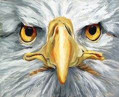 American Eagle - Bald Eagle Painting by Betty Cummings.  #bettycummings #painting #baldeagle