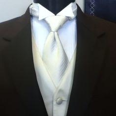 Groom - ivory vest and tie