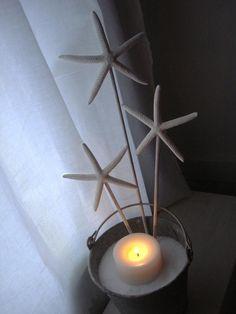 Starfish Wands