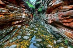 Alligator Gorge, Mount Remarkable National Park Sth Australia