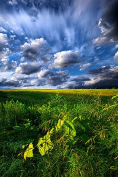 """Just Another Day"" Horizons by Phil Koch. Lives in Milwaukee, Wisconsin, USA. http://phil-koch.artistwebsites.com https://www.facebook.com/MyHorizons"