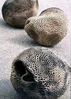 Rebecca Maeder, clay sea forms