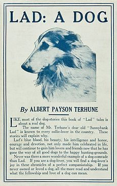 Lad A Dog (1919, touched up).jpg  http://en.wikipedia.org/wiki/Lad,_A_Dog