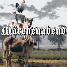 Märchenstunde Kangaroo, Animals, Tall Pants, Snow White Pictures, Guys, Ideas, Baby Bjorn, Animales, Animaux