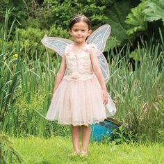 2-3 ans Rosebud Fairy Children/'s Costume par Travis Dress up by Design Bnwt