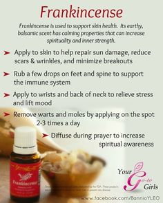 Young Living Frankincense Essential Oil Uses. It's no wonder this oil was brought as a gift to baby Jesus because this is an oil I never want to be without. There are over 52 references to this oil … Continue reading → Frankincense Essential Oil Uses, Doterra Essential Oils, Essential Oil Blends, Essential Oil Diffuser, Yl Oils, Benefits Of Frankincense Oil, Stress Relief Essential Oils, Young Living Oils, Young Living Essential Oils
