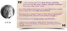 bach flower wheel - Google Search Emotional Healing, Helping Others, Remedies, Google Search, Flower, Home Remedies, Flowers