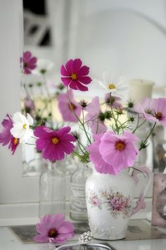 ♥  this bouquet of Cosmos