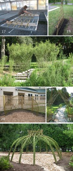 Bonnie Gale Living Willow Structures...412 County Road 31 Norwich, New York 13815