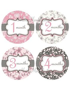 Baby Girl Monthly Onesie Stickers Pink Grey Floral Month Stickers New Baby Shower Gift Photo Prop  PACKAGED PERFECTLY Ready For Gift Giving on Etsy, $9.95