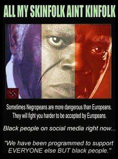 Like FBI & CIA Negroes