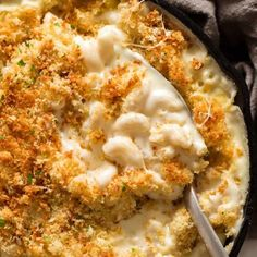 THE Baked Mac and Cheese recipe. An insane cheesy sauce, perfectly cooked macaroni and a golden, buttery, crunchy topping. The ultimate comfort food. Baked Mac, Oven Baked, Recipetin Eats, Cheesy Sauce, Stuffed Mushrooms, Stuffed Peppers, Cheese Recipes, Mac And Cheese, The Fresh
