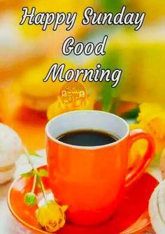 Sunday Morning Quotes, Sunday Wishes, Good Morning Msg, Good Morning Happy Sunday, Happy Sunday Quotes, Blessed Sunday, Good Morning Coffee, Good Morning Greetings, Morning Pics