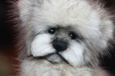 "Teddy bear 5.5 Inch recycled mink fur teddy bear. Vintage jackets always used. OOAK One Of A Kind http://www.kimbearlys.com ""Sold"""