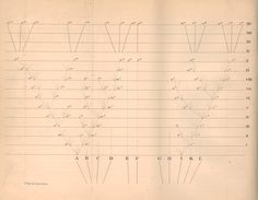 チャールズ・ダーウィン  「種の起源(On the Origin of Species)」  1859年刊