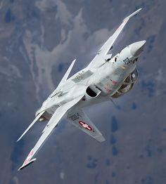 Tiger from the Swiss Air Force Military Jets, Military Aircraft, Military Weapons, Fighter Aircraft, Fighter Jets, Air Birds, Luftwaffe, Swiss Air, Jet Plane