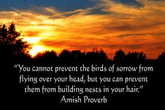 You cannot prevent the birds of sorrow from flying over your head . . . Amish Proverb