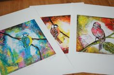 Bird Series - Fine Art Prints - Limited Edition, Signed - Set of 3 - by Jane Hinchliffe