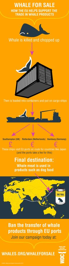 JOIN WDC IN CALLING FOR A BAN ON THE TRANSFER OF WHALE PRODUCTS THROUGH ALL UK AND EU PORTS.
