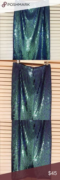 Midi Sequined Pencil Skirt Gorgeous Green Sequined Pencil Skirt. I haven't been able to wear... It's too small for me. :-/ H&M Skirts Midi