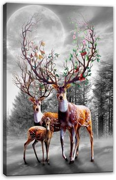 Canvas Prints,Black and White Deer Wall Art Oil Paintings Printed Pictures Stretched for Home Decoration Deer Pictures, Print Pictures, Fantasy Kunst, Fantasy Art, Painting Prints, Canvas Prints, Oil Paintings, Aigle Animal, Deer Wallpaper