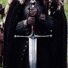 Catelyn Stark, Ned Stark, Jaime Lannister, Cersei Lannister, House Stark, Alayne Stone, Vikings, Dragon Age Characters, Brienne Of Tarth