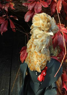 Giddy goes Hammer House of Horror, Chamois white-laced Polish Hen in the Gothic vampyre costume I designed and made for her https://holistic-hen.blogspot.fr/2016/10/halloween-costumes-for-chickens-anyone.html#.WBCvsbWli1E