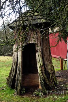 Loggers Outhouse Photograph  - Loggers Outhouse Fine Art Print