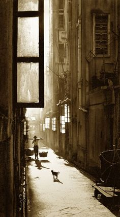 Fan Ho Brief encounter +