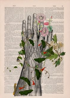 Human hand with flowers Anatomy Print on dictionary by PRRINT
