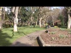 Victoria, BC - video by FB friend Dezarae Garbers of Me Myself and Food blog re Victoria BC
