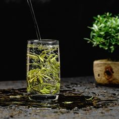 """""""Tea is quiet and our thirst for tea is never far from our craving for beauty. Tea Quotes, Flower Tea, Chinese Tea, Glass Vase, Beauty, Beauty Illustration"""