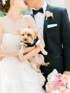 Hello little Yorkie! http://www.stylemepretty.com/2015/02/11/romantic-pink-on-pink-california-wedding/ | Photography: Honey Honey - http://www.hoooney.com/