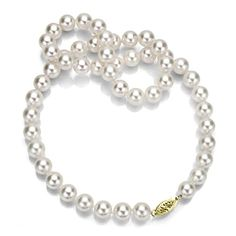14k Yellow Gold 859mm AAA Handpicked White Japanese Akoya Cultured Pearl Necklace 24 >>> Check this awesome product by going to the link at the image.Note:It is affiliate link to Amazon.