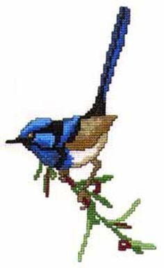 Australian Blue Wren cross stitch chart