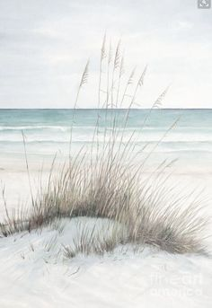 Signs that You Love the Beach Read More at: homes-makeovers.b… Signs that You Love the Beach Read More at: homes-makeovers.b…,Kunst / Artwork Signs that You Love the Beach Read More at: homes-makeovers. Art Plage, Beach Scene Painting, Beach Paintings, Seascape Paintings, Drawn Art, Ocean Colors, Calming Colors, Beach Reading, Am Meer