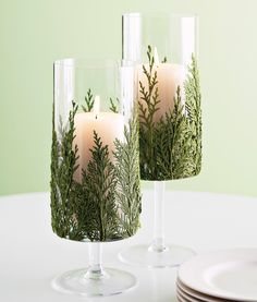 This DIY Evergreen Candle Will Make Your Holidays Even Brighter Elegant Christmas, Green Christmas, Simple Christmas, Christmas Gifts, Christmas Candles, Modern Christmas, Scandinavian Christmas, Coastal Christmas, Christmas Aesthetic